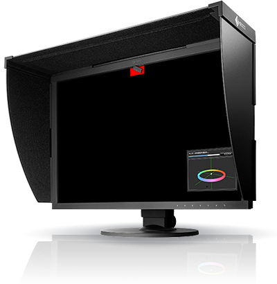 Monitor Eizo ColorEdge CG2420 BK + kabel DisplayPort